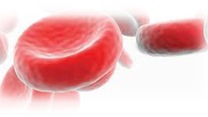 Iron and Anemia in Cancer Patients