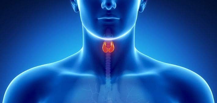 Free Webinar on Thyroid Health