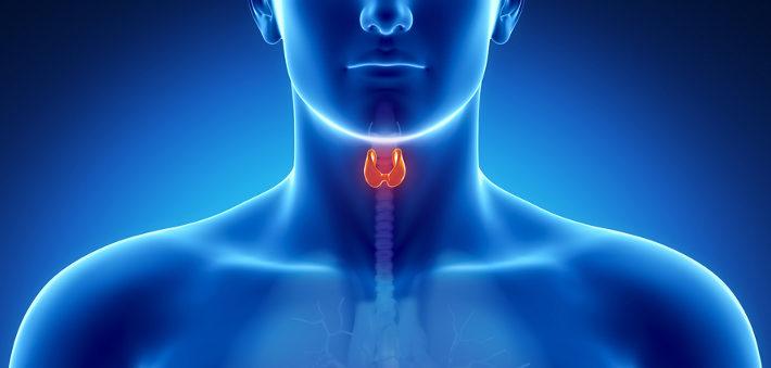 Free Webinar on Thyroid Health