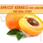 Apricot Seeds for Cancer?